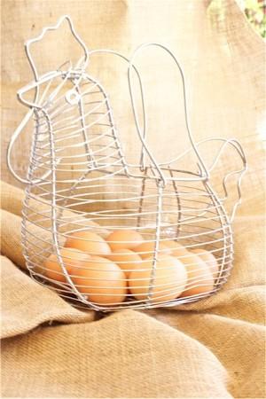 Flan gallina huevos