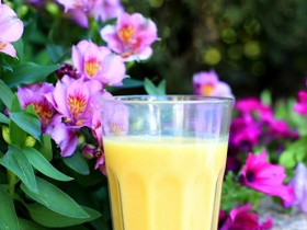 Smoothie de Mango y Yogurt- Portada